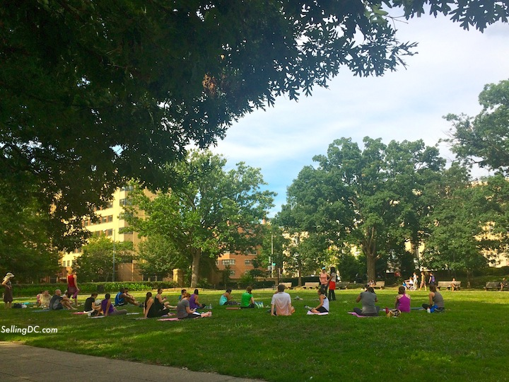 DC yoga in the park